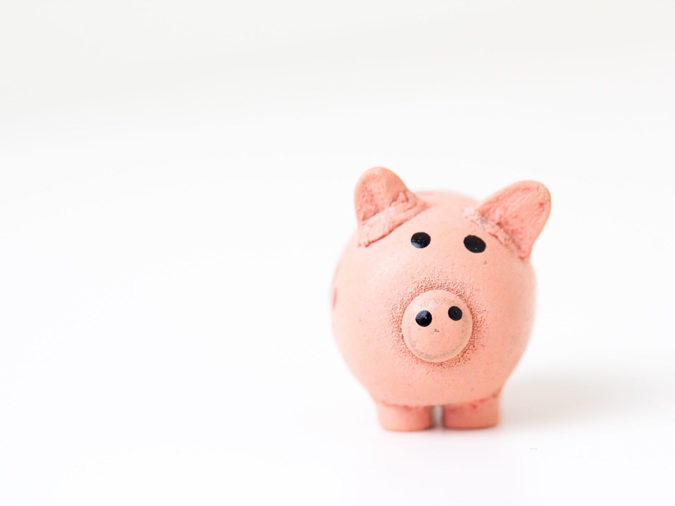 stock_schwein-discount-mehrwertsteuer-vat